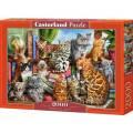 Puzzle 2000 dílků - Kočičí dům 200726