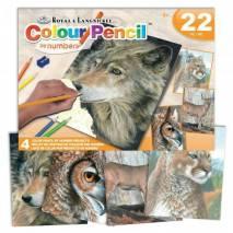 Sada malování podle čísel pastelkami - Vlk, sova, jelen, puma