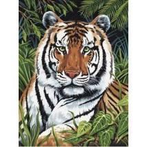Malování podle čísel - Tygr v trávě PJS75