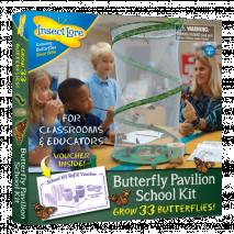 Motýlí školní sada (33 housenek)