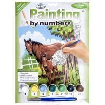 Malování podle čísel - Koně PJS21