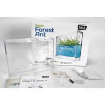 T.A.O.S. Super Forest Ant Ecoterrarium