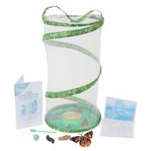 Velká motýlí zahrádka (10 housenek)