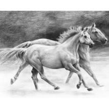 Malá sada tvoření - SKICOVÁNÍ Pejsci a koně