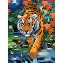 Malování podle čísel - Tygr PJS84