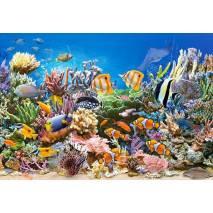 Puzzle 260 dílků - Ryby na korálovém útesu 27279