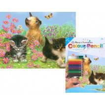 Malování podle čísel pastelkami A4 - Koťata