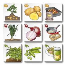 Betexa PEXETRIO Ovoce a zelenina