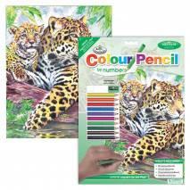 Malování podle čísel pastelkami A4 - Jaguáři