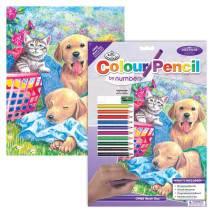 Malování podle čísel pastelkami A4 - Kotě se štěňaty