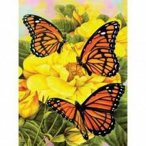Malování podle čísel - Motýlci na žlutých kytkách PJS68