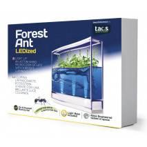 T.A.O.S. Forest Ant LEDized Antquarium