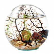 T.A.O.S. BeachWorld Biosféra BALL s korálem 12,5cm WG5