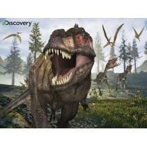 Puzzle 3D efekt - Dinosaurus T-REX 100 dílků