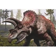 Puzzle 3D efekt - Dinosaurus Triceratops 100 dílků