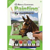 Malování podle čísel - Kůň v ohradě PJS88