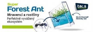Gelové ekoterárium pro mravence