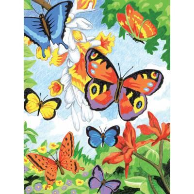 Malování podle čísel pastelkami A4 - Motýli